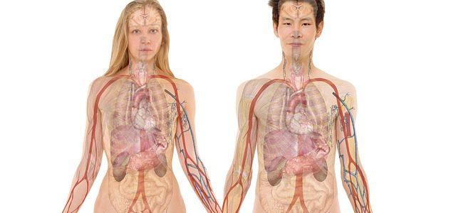 von Reiki zum Röntgenblick